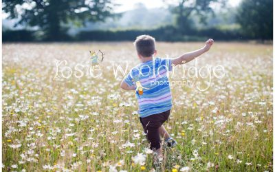 Meadow shoot near Hadlow Down, East Sussex